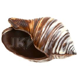 bonbonnière, shell