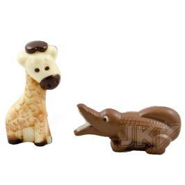 giraffe, crocodile