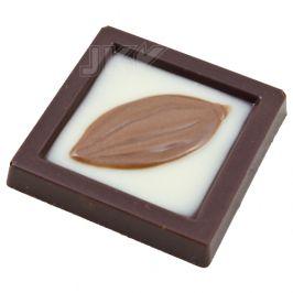 caraque, cocaoboon